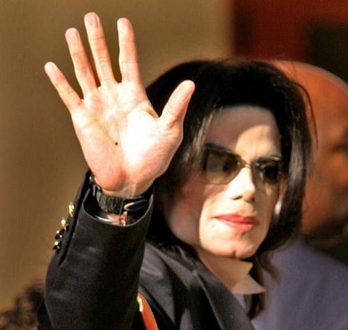 マイケルの手8.jpg